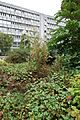 Jardin Villemin @ Paris (29451892700).jpg