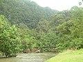 Jembatan Cik Itik Padang Tarok Bukittinggi - panoramio.jpg