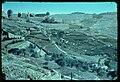 Jerusalem. Hill of Ophel LOC matpc.22742.jpg