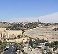Jerusalem OlivesMount J82r.jpg