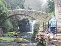 Jesmond Dene Mill 1172.JPG