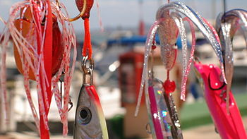 Dia de pesca - 4 4