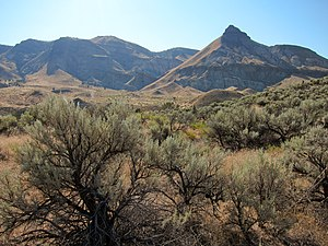 Blue Mountains (ecoregion) - John Day Fossil Beds National Monument