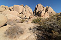 Joshua Tree National Park December 2013 005.jpg