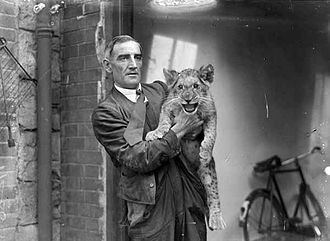 Dublin Zoo - Mr Flood, a longtime Dublin Zoo employee, with a lion cub c. 1936