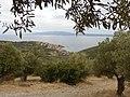Küste von Sithonia.jpg