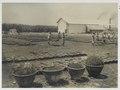 KITLV - 30201 - Kurkdjian, N.V. Photografisch Atelier - Soerabaja - Sugar plantation in East Java - 1921.tif