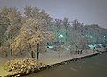 Kaisaniemi park in winter - Marit Henriksson 2.jpg