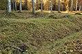 Kapellbäckens gravfält (Hedemora 65-1) 03.JPG