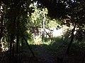 Karsak - panoramio - Ufuk Önen (1).jpg