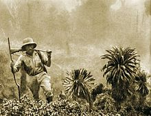 Sepia photograph of a man, Kazimierz Nowak, wearing khakis and a pith helmet in the African jungle