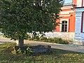 Khram Kazanskoy Ikony Troitsk 2356 (45657727132).jpg