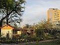 Kleingartenanlage am Stadtrand - panoramio.jpg