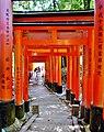 Kyoto Schrein Fushimi-Inari-taisha Torii 39.jpg
