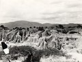 Lösslandskap. Gran Chaco. Bolivia - SMVK - 0702.0003.tif