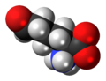 L-Allysine-zwitterion-3D-spacefill.png