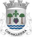 LRA-caranguejeira.png