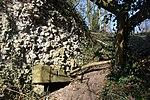 LSG Calenberger Leinetal - Alt Calenberg - Ruinen (4).jpg