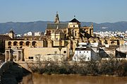 La Mezquita from Calahorra Tower - Córdoba (2).JPG