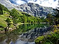 Lac de Derborence.jpg
