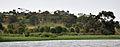 Lake Viktoria 2009-08-26 14-32-38.JPG