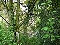 Langenfeld Haus Graven 0006.jpg