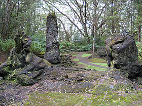 Image illustrative de l'article Monument d'État de Lava Tree