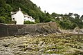 Lee Bay - geograph.org.uk - 873175.jpg