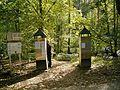 Leichlingen - Sinneswald 02 ies.jpg