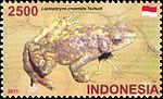 Leptophryne cruentata 2011 stamp of Indonesia 2.jpg