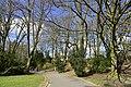 Les arbres pas encore en feuillage (25724028704).jpg