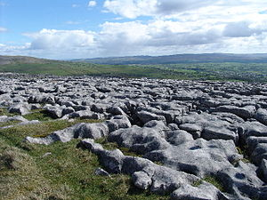 English: Limestone Pavement at Twisleton Scar ...