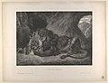 Lion of the Atlas Mountains MET DP852121.jpg