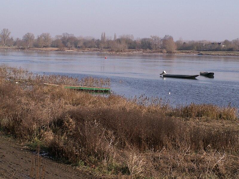 La Loire à la Pointe, Bouchemaine, Maine-et-Loire, France