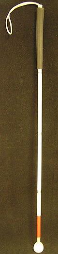 Long cane.jpg