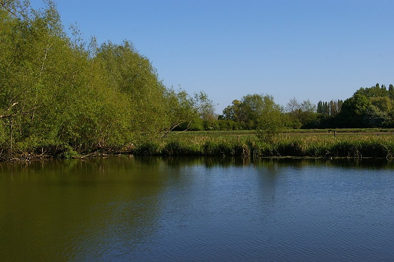 File:Looking across the Cherwell at Parsons Pleasure (geograph 5379091).jpg