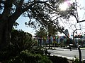 Los Angeles, CA, View E from Los Angeles Plaza, 2012 - panoramio.jpg