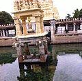 Mahanandi pond.jpg