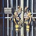Maison Leon Losseau - exterieur - portail avec poignees de porte aux fleurs de fuchsia.jpg