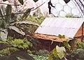 Malaysian hut, Eden Project, St Blaise CP - geograph.org.uk - 655380.jpg