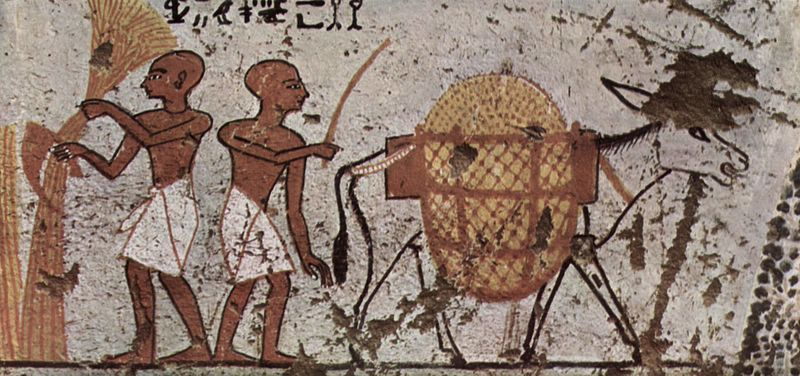 Archivo:Maler der Grabkammer des Panehsi 001.jpg