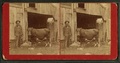 Man and the Cow, by Couch, C. M., fl. 1860-1889.png