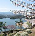 Manno Lake.jpg