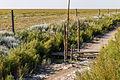 Markering van spoorlijn die is verdwenen onder een dikke laag slik. Locatie, Noarderleech Provincie Friesland 03.jpg