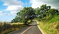 Maui (15784262096).jpg