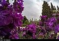 Mausoleum of Saadi Shirazi2021 38.jpg