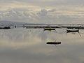 Messolonghi lagoon.jpg
