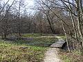 Mestský park Lanice vo Zvolene - jazierko.JPG