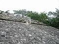 Mexico yucatan - panoramio - brunobarbato (25).jpg