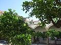 Mezquita y alcazaba - panoramio.jpg